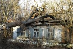Покинута домівка