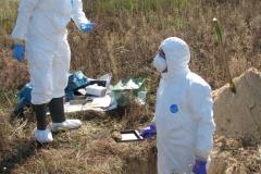 Международные учения по защите в чрезвычайных ситуациях Федерального ведомства ФРГ по радиационной защите, сентябрь 2016 г.