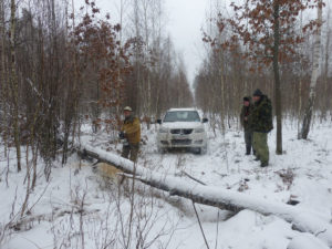 Поваленные деревья − обычное препятствие на пути исследователей