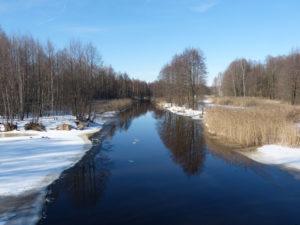 Каналы зоны отчуждения - типичные места обитания выдры