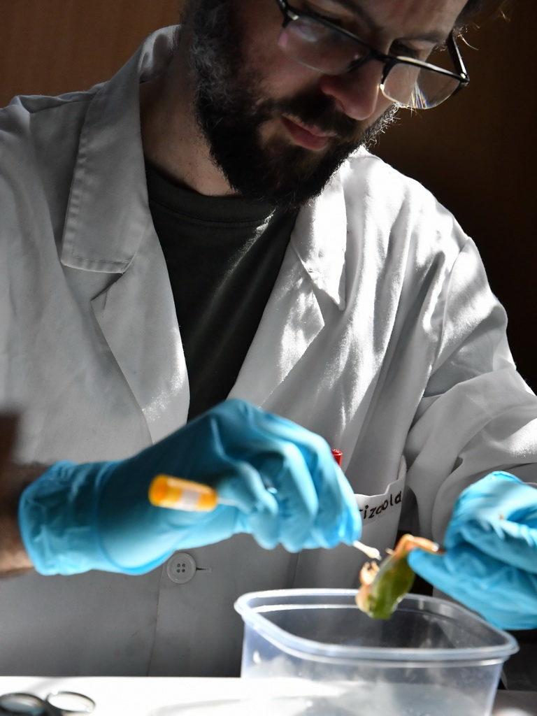 Отбор образцов слизи для иммунологических исследований