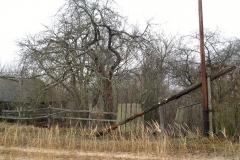 Покинуте селище в Чорнобильській зоні відчуження