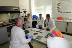 Trainings on radiobiology. Working moments.